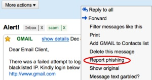 "screenshot of the scrolling menu mentioned above, with ""Report phishing"" circlled"